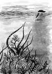 Inktober 20, coral by werepine