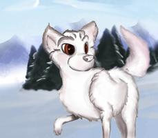 Snowie the fox