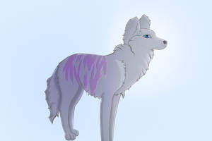 Wolfiger?