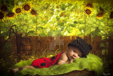Baby-in-sunflower-field