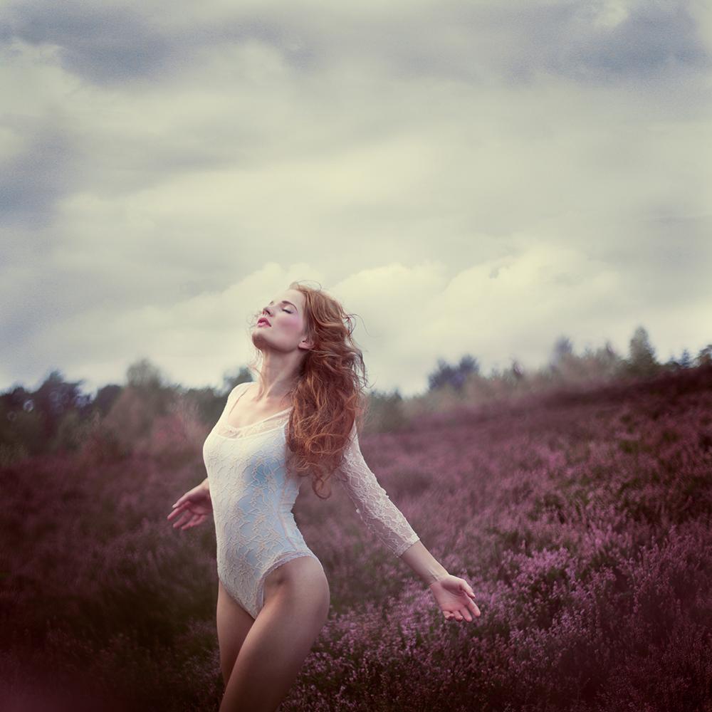 Heathland by Sturmideenkind