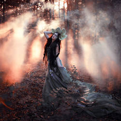 Enchanted by Sturmideenkind