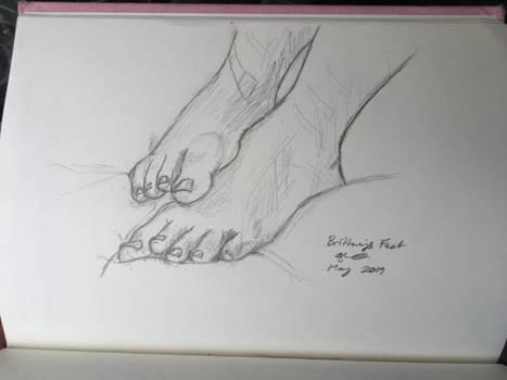 Brittanys Feet