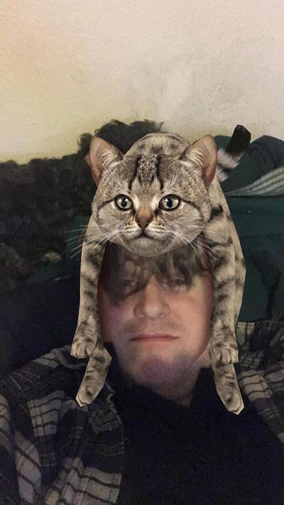 Cat scratch fever by gentleEvan