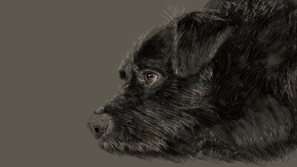 My dog's painting by DragosAndrei