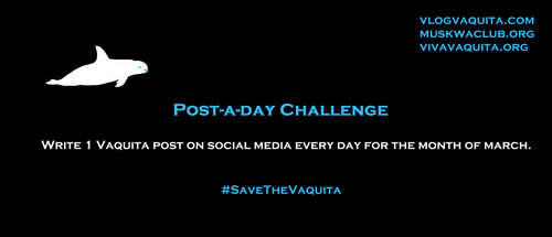Post-a-day Challenge