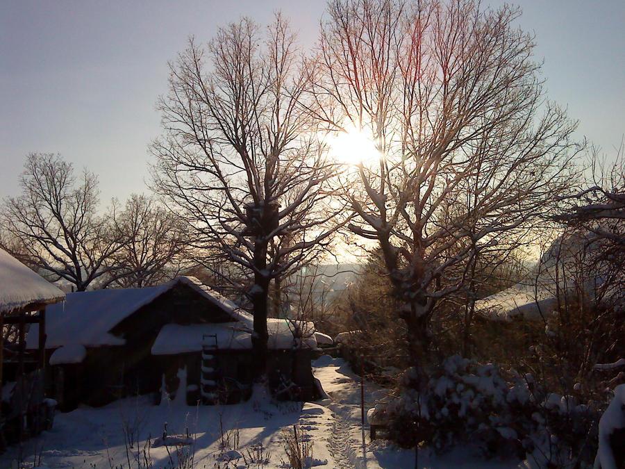 Rus-Winter Photo 2