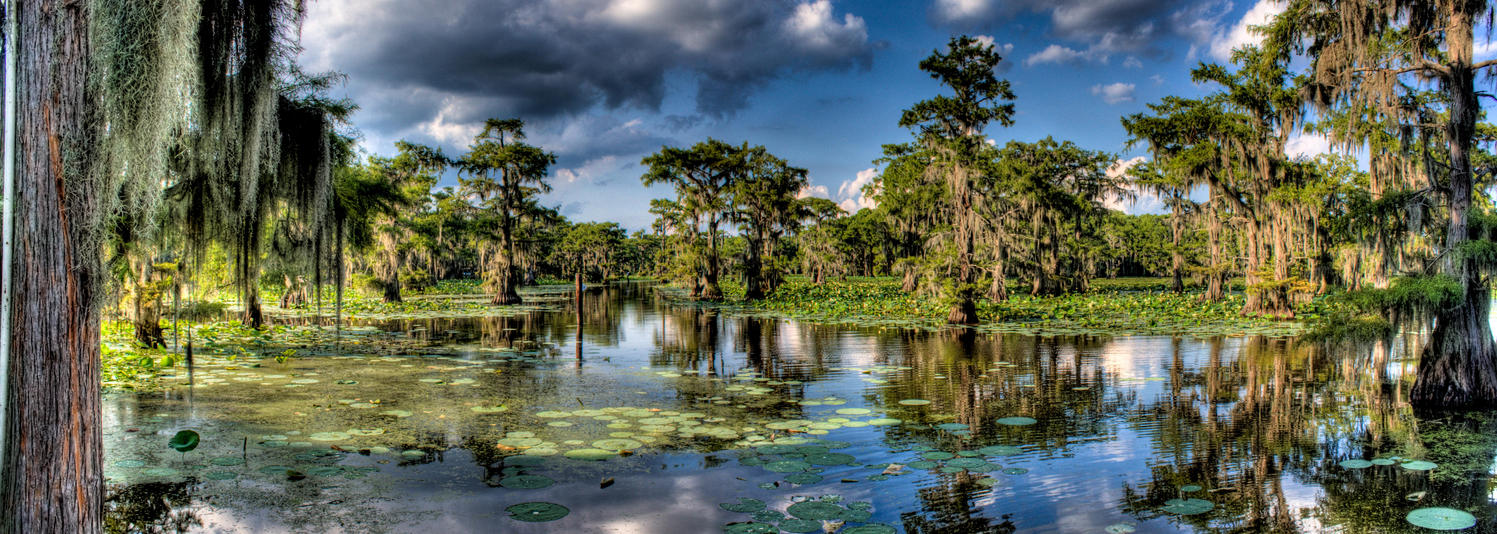 caddo lake state park map with Caddo Lake Panorama 147285136 on Nyctourist Map blogspot furthermore Equestrian trails together with Texas likewise Mission Tejas as well Caddo.