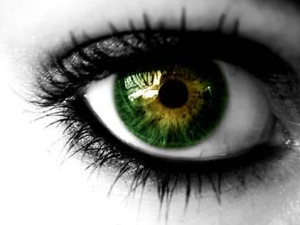 Drive tru my green eye by NordKitten