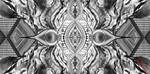 Black and White by ACyborgSquid