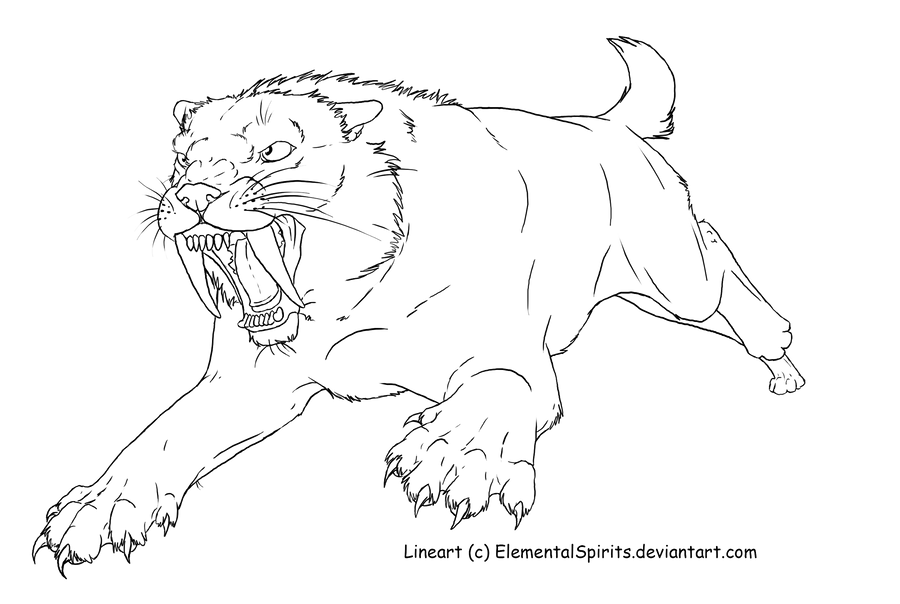 saber tooth coloring pages | Smilodon template by ElementalSpirits on DeviantArt