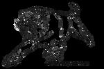 Smilodon template by ElementalSpirits