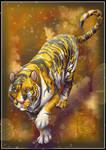 Calico Tiger