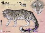 Xaina Character sheet