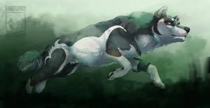 Running Wolf Link