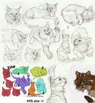 Your Character Here Sketches