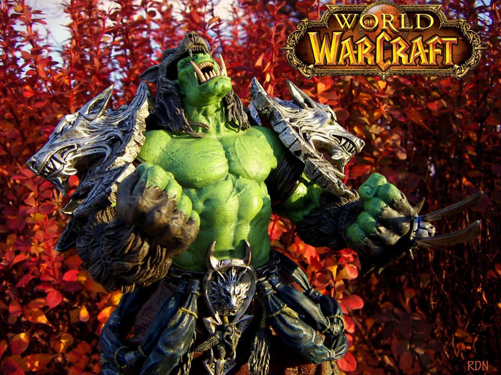 http://fc02.deviantart.net/fs19/f/2007/309/1/f/World_of_Warcraft___Wallpaper_by_RobertDeNitro.jpg