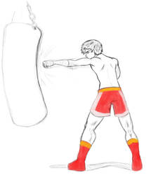 boxer trial