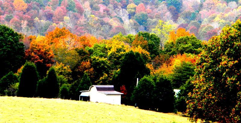 Fall On The Farm by deep-south-mele