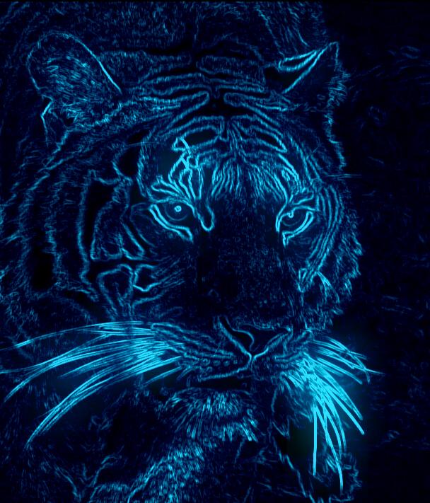 Neon tiger by booya22 on deviantart - Neon animals wallpaper ...
