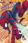 Non Stop Spider-man #2