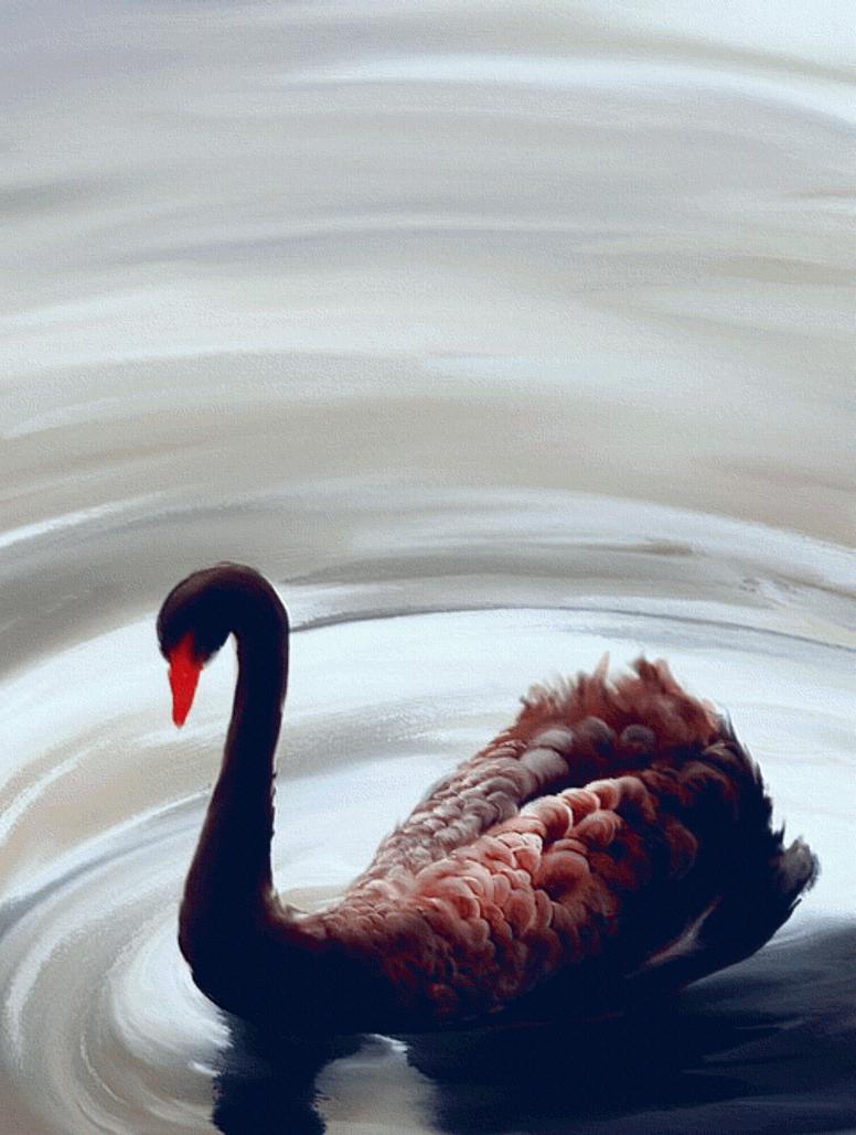 Sad Swan by mottomoyoi