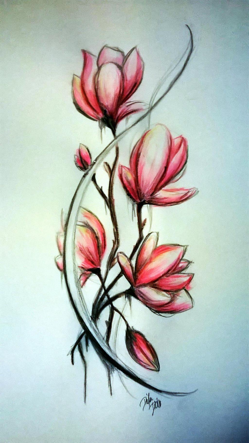 Magnolia sketch by Diuus