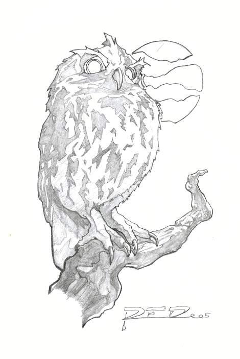 Owl by RubenFD