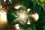 Green-Gold Daze