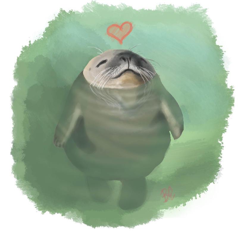 Годовщиной бракосочетания, смешные рисунки с тюленем