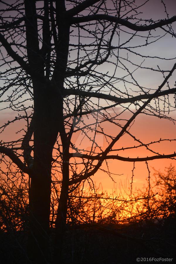 Shrewsbury Morning by MrWitchblade