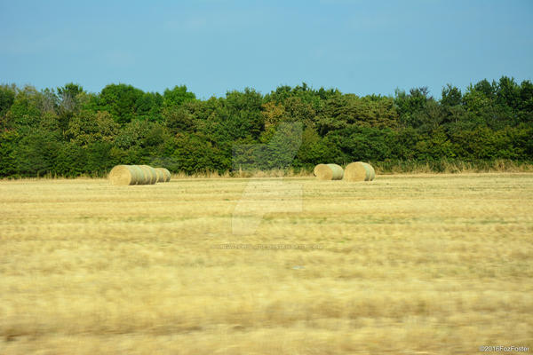 Rolling Hay by MrWitchblade