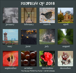 Review of 2018 by MrWitchblade