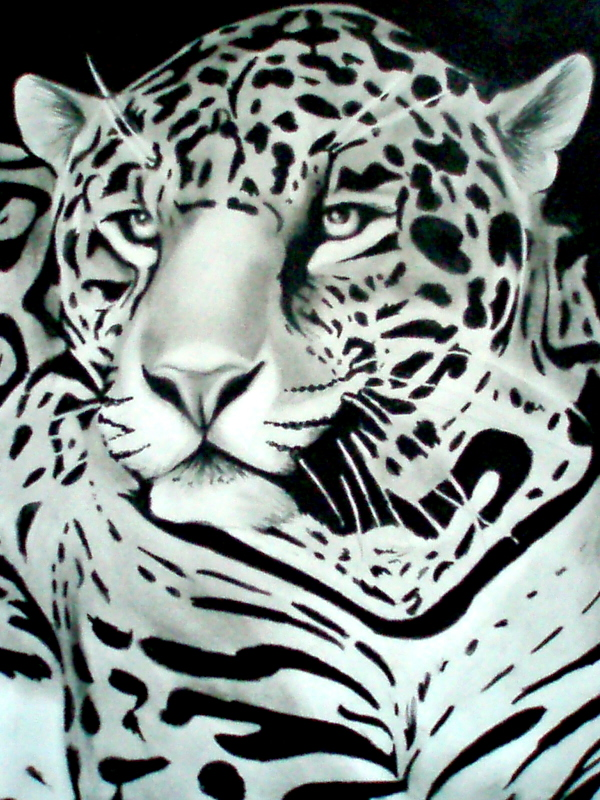 Jaguar by artistelllie