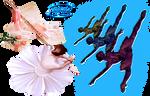 Ballet - PNG
