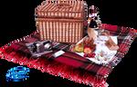 Picnicking  - PNG