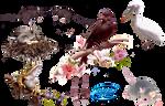 Animal kingdom - PNG