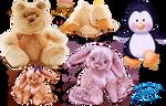 Cute teddies - PNG