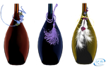 Decorative bottles - PNG
