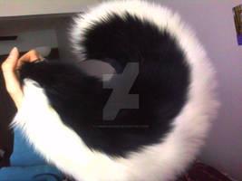 Black Husky Tail - For Sale by Lunar-Foxxie