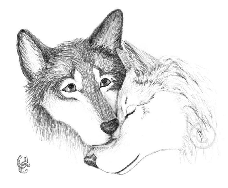 Wolf lovers chat