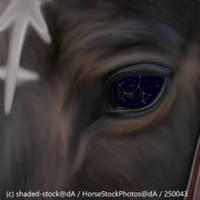 Sagittarius  by Flipperruby30