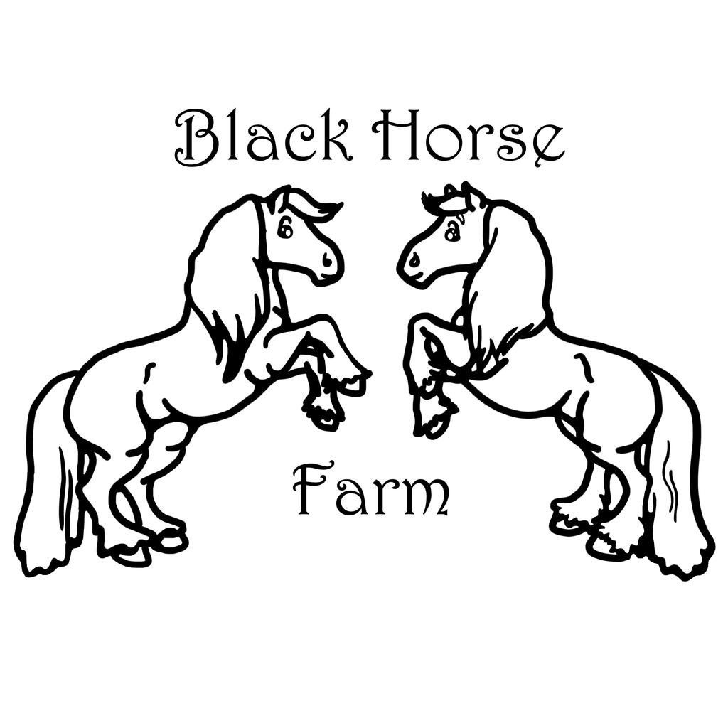 Horse Sculpture Amazoncom