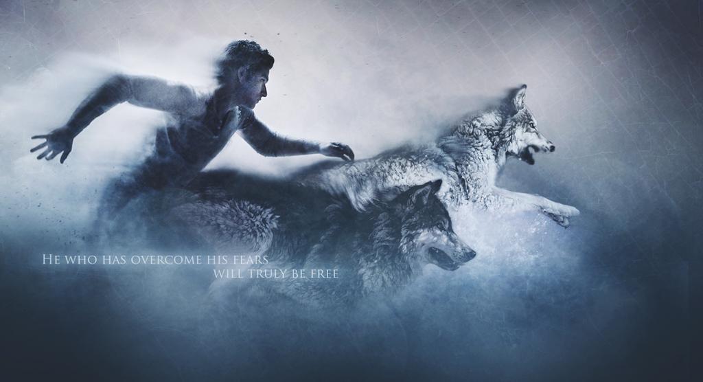 Teen Wolf Wallpaper 1 by KredOll on DeviantArt