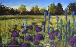 Allium Meadow