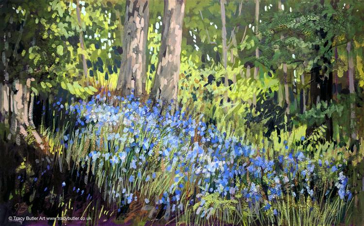 Culzean Bluebells by tracybutlerart