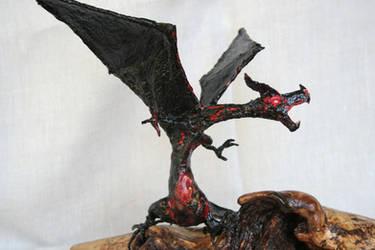 Dragon 07