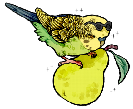 parakeet on a pear with a pair of sunglasses