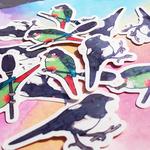 bird wizard stickers