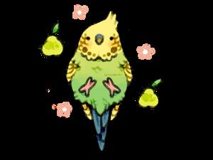 a weird looking pear